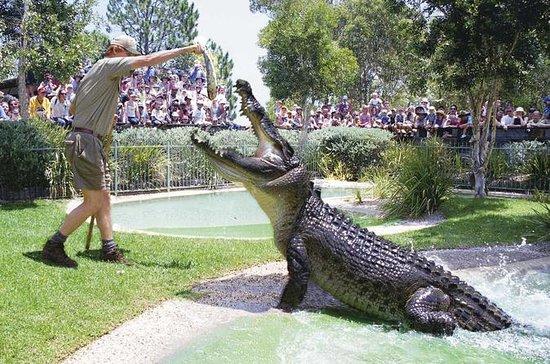 Australian Reptile Park General Entry...
