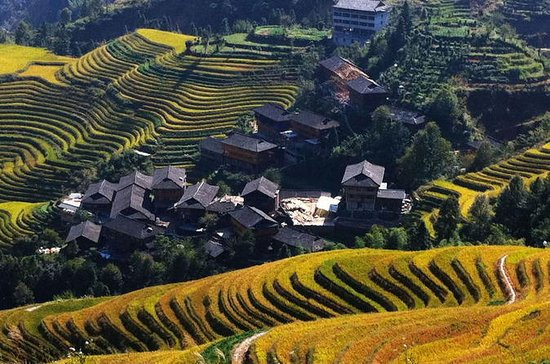Guilin Bus Tour of Longji Rice...
