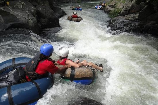 Tubing a Canyon River, Canopy