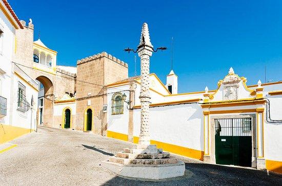 Visita privada a Évora desde Lisboa