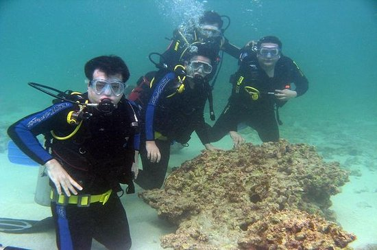 Cham Island Full Day Trip with Scuba...