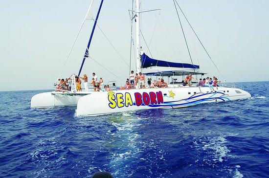 Excursão de meio dia de catamarã...