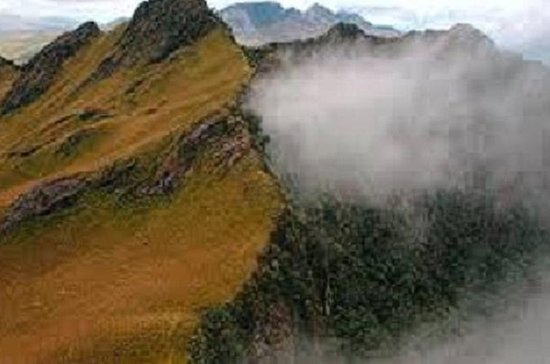 Hiking Tour in Pasochoa Reserve from...