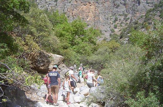 クレタ島のAoteslemis Gorge Walk