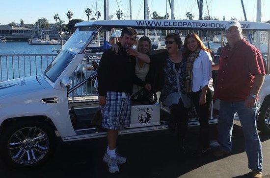Tour de medio día por Santa Monica y...