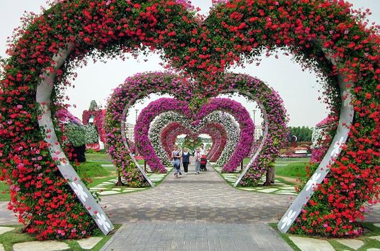 Dubai Miracle Gardens, Butterfly Garden, and Global Village