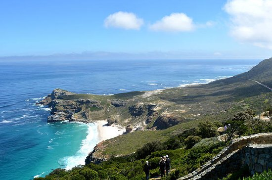 Privat tur: Cape Peninsula og...