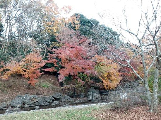Izumiya Park