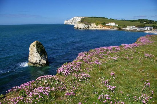 Isle of Wight Overnight Tour from...