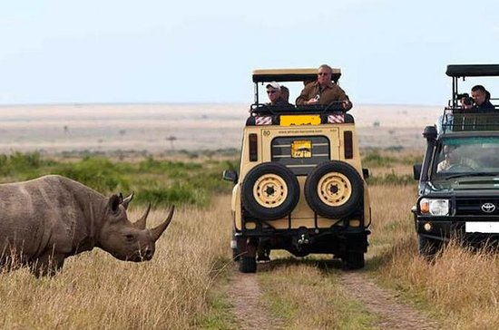 14-Days Kenya and Tanzania Camping...