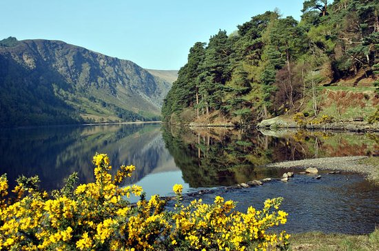 Wicklow、Powerscourt、Glendalough Tourダブ…