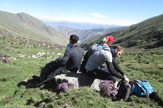 Tour privado de 10 días por el Tíbet...