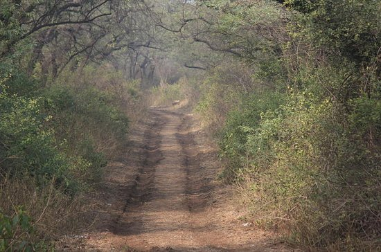 Bike and Hike Adventure from Delhi