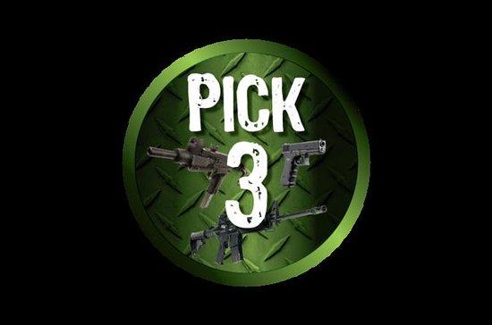 3-Gun Package at the Gun Store