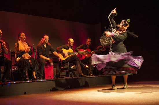 Spectacle de flamenco : Palacio del...