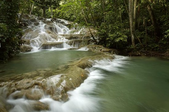 Dunn's River Falls Private Tour Von ...