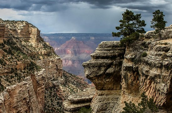 Grand Canyon South Rim Tour from...