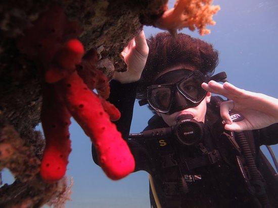 Bait Alaqaba Diving Center