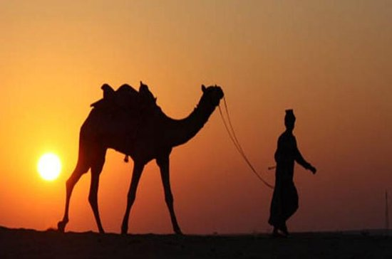 5-Night Private Rajasthan Tour from...