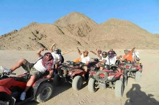 Excursion de safari en quad dans le...