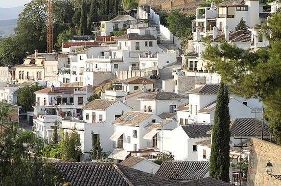 Albayzin and Sacromonte Walking Tour...