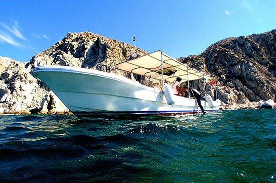 Tour privado: crucero turístico en Cabo San Lucas