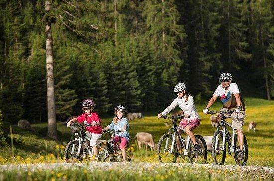 Visita guiada en bicicleta al Monte...