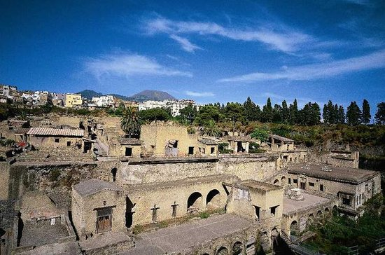 Herculaneum and Pompeii Tour from...