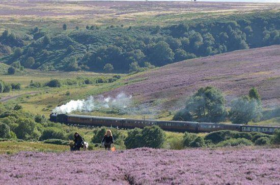Steam Trains, Whitby, et la visite...