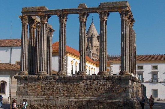 Excursion d'une journée à Évora et...