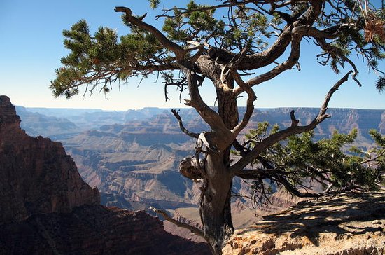 Grand Canyon Hike with Sedona and...