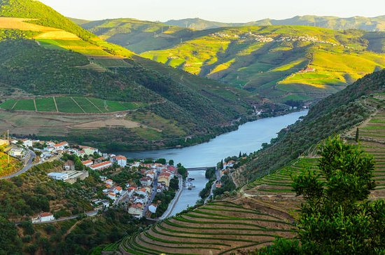 Excursion d'une journée à Douro