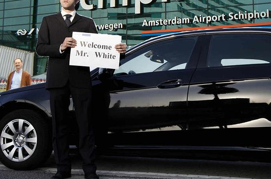 Private Arrival Transfer: Amsterdam Schiphol Airport to City Center