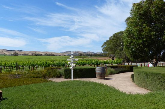 Barossa Valley Day Trip from Adelaide...