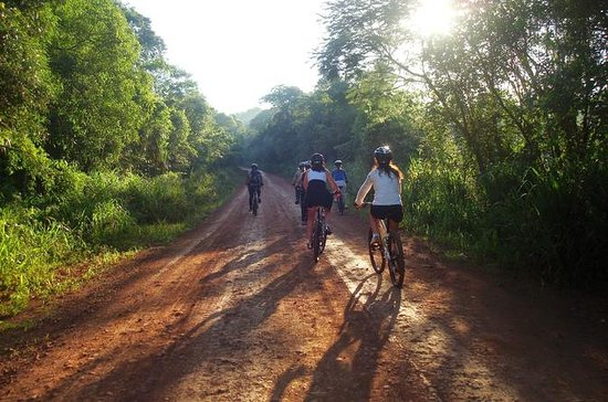 Excursion en vélo d'Iguazú à la route...