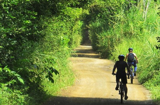 Pereira Full-Day Bike Tour Including ...