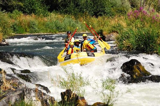 Halbtägiges Rogue River Rafting
