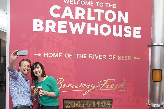Carlton Brewhouse Brewery Tour with...