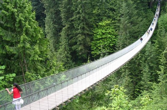 Vancouver North Shore Tour: Capilano Bridge, Grouse Mountain