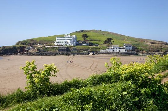 South Devon private guided tour from