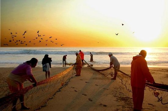 Xávega Fisherman Experience with...
