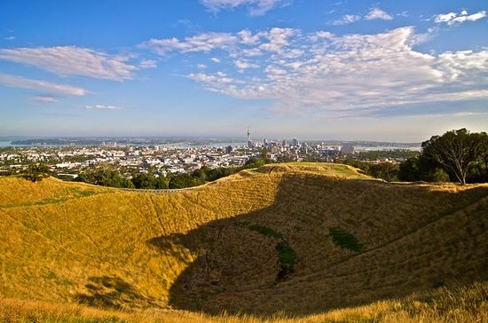 Private Tour: Auckland City and...