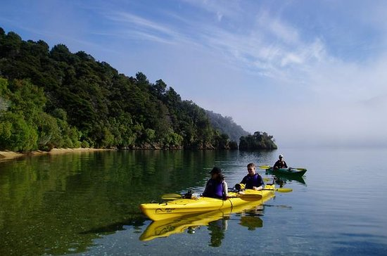 Full day Guided Sea Kayak Tour from...