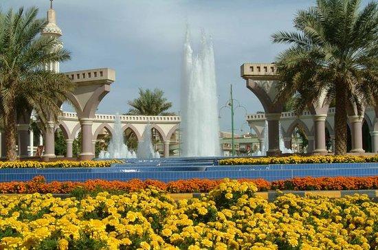 Excursión a Al Ain desde Abu Dabi