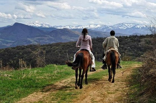 Horse Riding in Tetevan Balkan from...