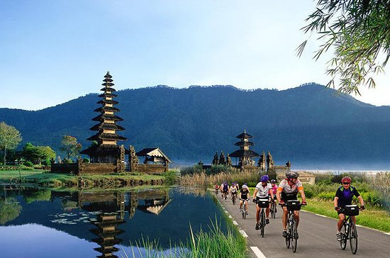 Full-Day Bali Sightseeing Tour with...