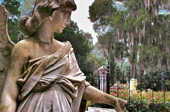 Bonaventure Cemetery Journeys with Shannon Scott