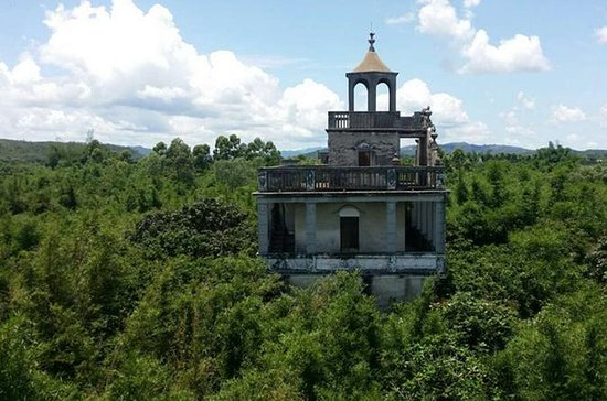 Private Tour: Kaiping Garden, Watchtowers, and Old Chikan Day Trip...