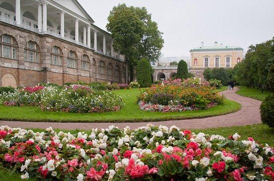 Skip-The-Line Private Tours: Tsarkoye