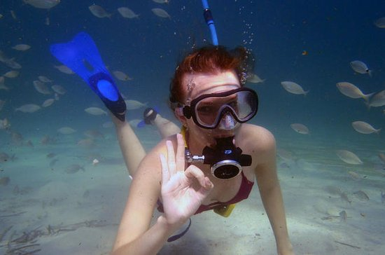 Punta Negra Diving Experience in...